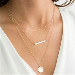 Jewelry - Layered Bar and Disc Necklace